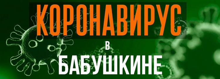 Коронавирус в Бабушкине