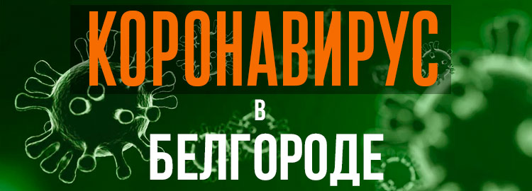 Коронавирус в Белгороде
