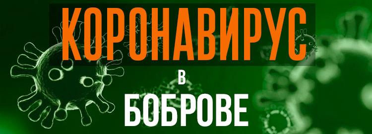 Коронавирус в Боброве