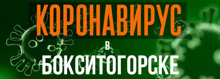 Коронавирус в Бокситогорске
