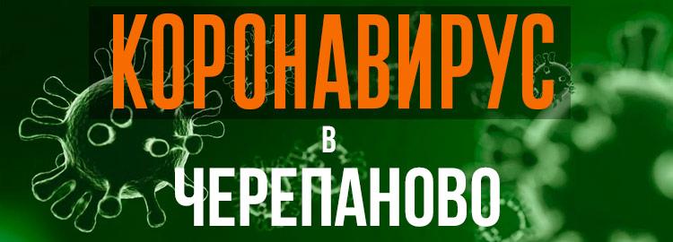 Коронавирус в Черепаново