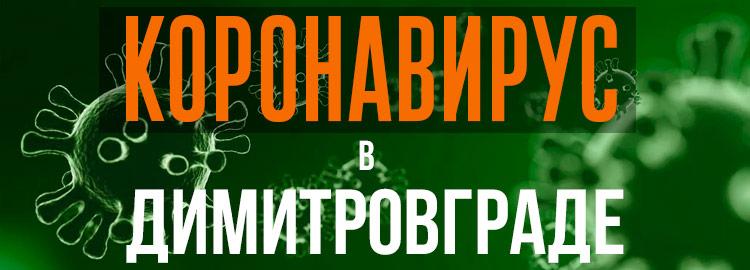 Коронавирус в Димитровграде