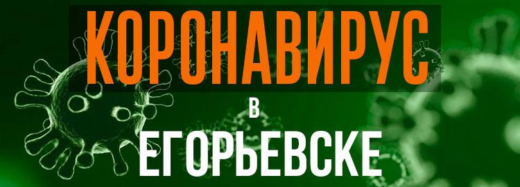 Коронавирус в Егорьевске