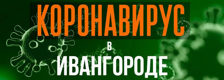 Коронавирус в Ивангороде