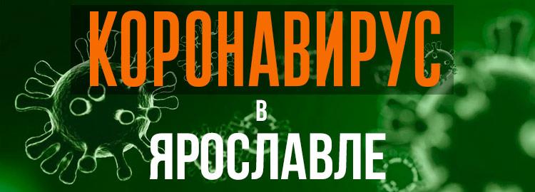 Коронавирус в Ярославле