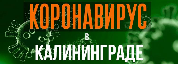 Коронавирус в Калининграде