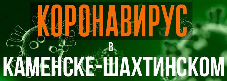 Коронавирус в Каменске-Шахтинском
