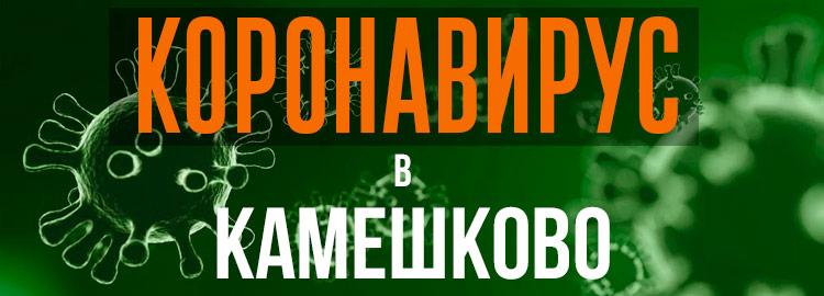 Коронавирус в Камешково