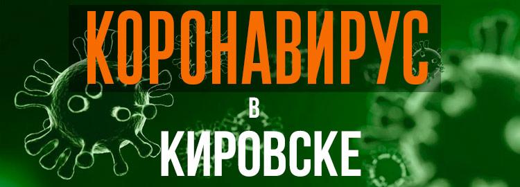 Коронавирус в Кировске