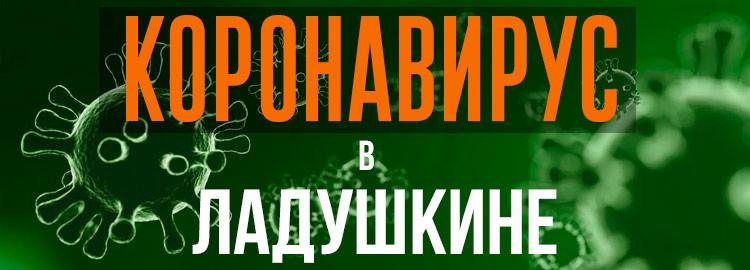Коронавирус в Ладушкине