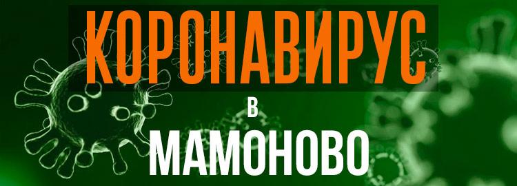 Коронавирус в Мамоново