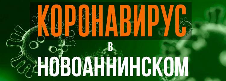 Коронавирус в Новоаннинском