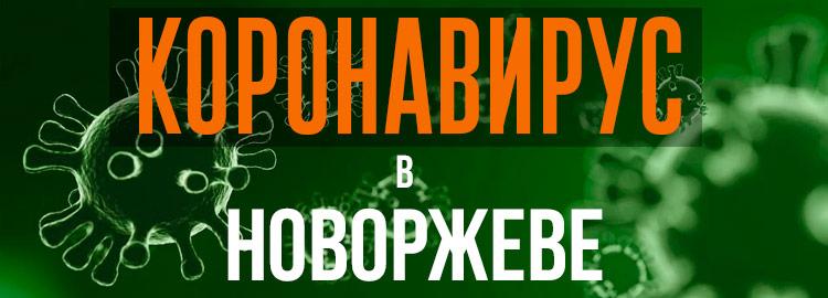 Коронавирус в Новоржеве