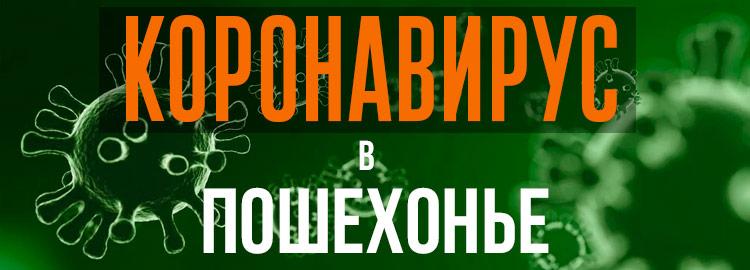 Коронавирус в Пошехонье