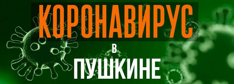 Коронавирус в Пушкине