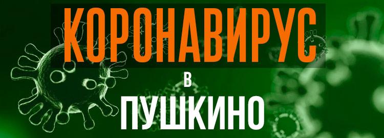 Коронавирус в Пушкино