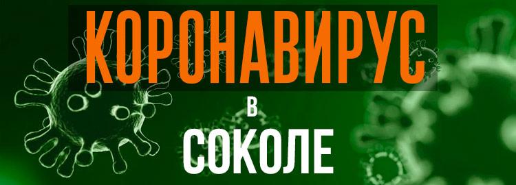 Коронавирус в Соколе
