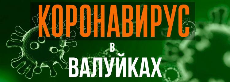 Коронавирус в Валуйках