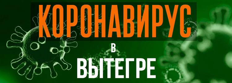 Коронавирус в Вытегре