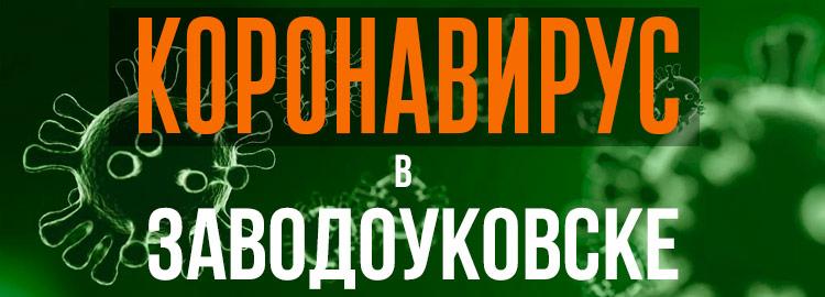 Коронавирус в Заводоуковске