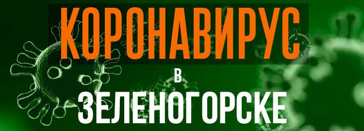 Коронавирус в Зеленогорске