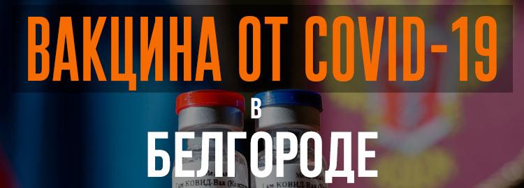 Прививка вакциной от коронавируса в Белгороде Спутник V. Адреса и телефоны где можно сделать бесплатно и платно в Белгороде. Актуальные цены.