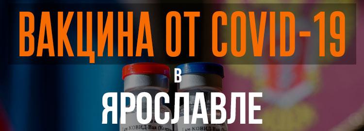 Прививка вакциной от коронавируса в Ярославле Спутник V. Адреса и телефоны где можно сделать бесплатно и платно в Ярославле. Актуальные цены.
