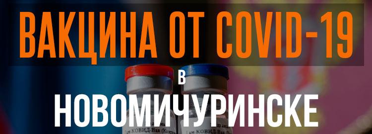 Прививка вакциной от коронавируса в Новомичуринске Спутник V. Адреса и телефоны где можно сделать бесплатно и платно в Новомичуринске. Актуальные цены.