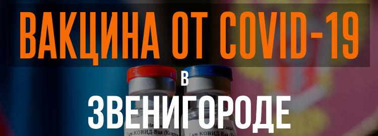 Прививка вакциной от коронавируса в Звенигороде Спутник V. Адреса и телефоны где можно сделать бесплатно и платно в Звенигороде. Актуальные цены.
